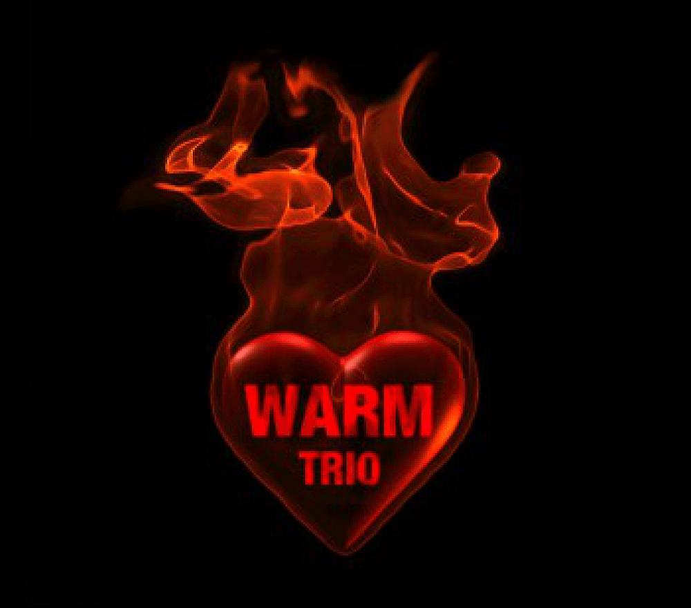Płyta Warm Trio okładka